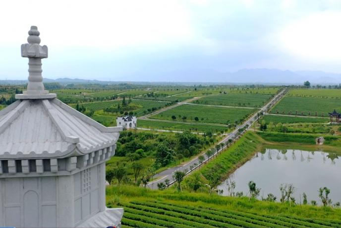 九井峰茶文化品赏园风景