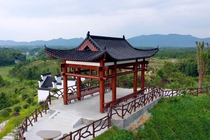 九井峰茶文化品赏园风采